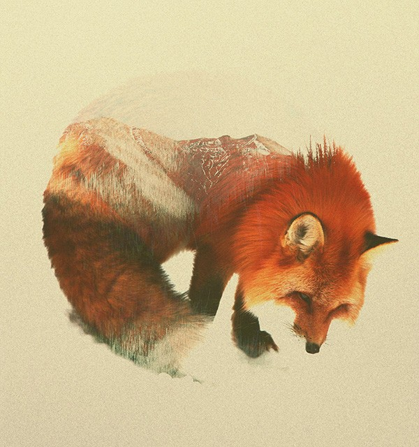 double-exposure-animal-portraits-andreas-lie-3