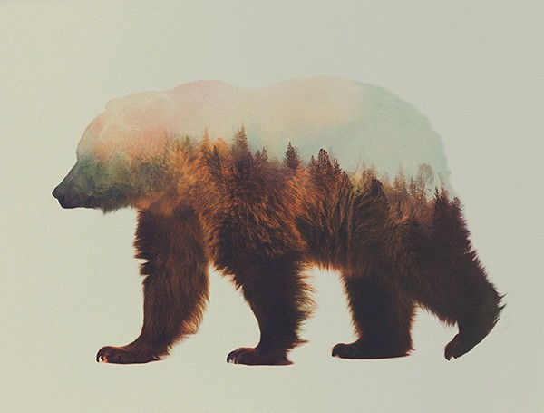 double-exposure-animal-portraits-andreas-lie-9